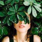 Taxus Baccata: eine dichte und immergrüne Hecke ganz nach unserem Geschmack
