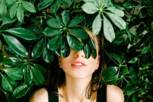 heckenpflanzen-heijnen